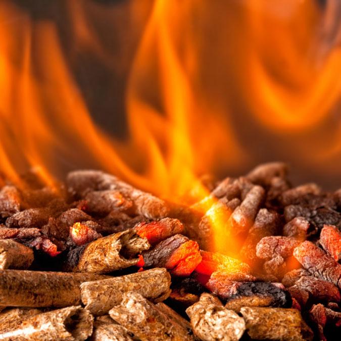 Fireplace Specialties BBQ Outdoor - Pellets